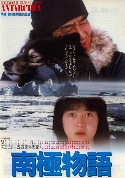 南極物語の画像 p1_31